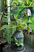 ABIGAIL AHERN HOUSE, LONDON: REAL AND FAUX PLANTS IN AND AROUND CONTAINER ON PATIO - OUTDOOR, GREEN, SPACE