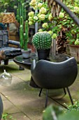 ABIGAIL AHERN HOUSE, LONDON: TOWN GARDEN - OUTDOOR PATIO AREA - BLACK BENCH, BLACK CHAIR, FAUX CACTUS IN BLACK CONTAINER, HYDRANGEA, PATIO, PATH, PAVING