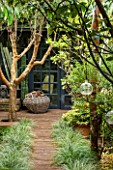 ABIGAIL AHERN HOUSE, LONDON: WOODLAND TOWN GARDEN , FAUX WOOD PATH, CABIN TYPE SHED, GREEN, OASIS, LATE SUMMER