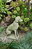 ABIGAIL AHERN HOUSE, LONDON: STATUE OF DOG IN TOWN GARDEN - ORNAMENT, HYDRANGEA
