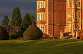BURTON AGNES HALL, EAST YORKSHIRE: CHRISTMAS - THE HALL AT SUNRISE - MORNING LIGHT, YEW, TAXUS BACCATA, CLIPPED, TOPIARY