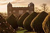 BURTON AGNES HALL, EAST YORKSHIRE: CHRISTMAS - THE GATEHOUSE AT SUNRISE - MORNING LIGHT, YEW, TAXUS BACCATA, CLIPPED, TOPIARY, LIGHTS, LIGHTING, FAIRY LIGHTS