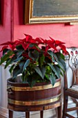 BURTON AGNES HALL, EAST YORKSHIRE: CHRISTMAS - THE DINING ROOM WITH LARGE RED POINSETTIA IN WOOD AND BRASS CONTAINER.