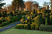 BRODSWORTH HALL, YORKSHIRE: DAWN. WINTER, JANUARY, TOPIARY EVERGREEN, BORDER, FORMAL, GARDEN, COUNTRY, CLIPPED, HOLLY, CEDAR OF LEBANON, ITALIANATE SUMMERHOUSE, LAWN