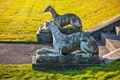BRODSWORTH HALL, YORKSHIRE: GREYHOUND STATUES BESIDE STONE STEPS
