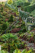 BRODSWORTH HALL, YORKSHIRE: THE FERN DELL - STAIRS, TRACHYCARPUS FORUNEI, IVY, FERNS, FERN, GREEN