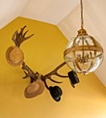 THE FREETH, HEREFORDSHIRE: HALLWAY - PRINT ROOM YELLOW FROM FARROW AND BALL PAINTED WALLS, ANTLER HAT RACK, GILT AND GLASS ORB LANTERN