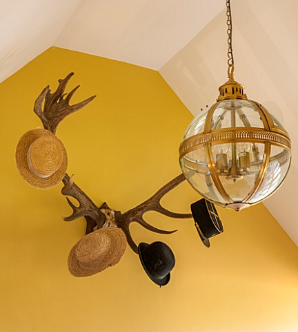 THE_FREETH_HEREFORDSHIRE_HALLWAY__PRINT_ROOM_YELLOW_FROM_FARROW_AND_BALL_PAINTED_WALLS_ANTLER_HAT_RA