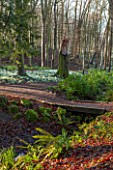 PAINSWICK ROCOCO GARDEN, GLOUCESTERSHIRE: WOOD WITH SNOWDROPS. WHITE, FLOWERS, WINTER, JANUARY, GALANTHUS, WOODLAND, DRIFTS, GARDEN, PATH, PATHS, BRIDGE