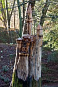 PAINSWICK ROCOCO GARDEN, GLOUCESTERSHIRE: BEECH TREE IN WOODLAND SCULPTED INTO A GERMAN CASTLE BY CHAINSAW SCULPTOR DENIUS PARSON. ORNAMENT, SCULPTURE, WOOD