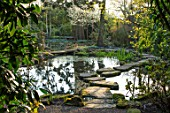 MORTON HALL, WORCESTERSHIRE: SPRING. STEPPING STONES, POND, REFLECTION OF BIRCH TREES ACROSS THE WATER. POOL, REFLECTIONS, REFLECTED, WOODLAND, ROCK, ROCKS
