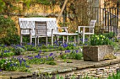 ABLINGTON MANOR, GLOUCESTERSHIRE: STONE TERRACE WITH WOODEN TABLE AND CHAIRS AND GRAPE HYACINTHS GROWING BETWEEN CRACKS. MUSCARI, SPRING, ENGLISH, GARDEN, COUNTRY, DAFFODILS