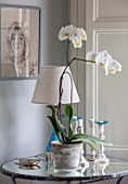 LONDON HOUSE DESIGNED BY JULIE SIMONSEN. WHITE ORCHID ON MIRRORED SIDE TABLE WITH LAMP AND CANDLESTICKS.