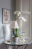 LONDON HOUSE DESIGNED BY JULIE SIMONSEN. WHITE ORCHID ON MIRRORED SIDE TABLE IN LIVING ROOM WITH LAMP AND CANDLESTICKS