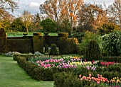 WARDINGTON MANOR, OXFORDSHIRE: THE LAND GARDENERS - SPRING, TULIPS GROWING IN CUTTING GARDEN. YEW, TOPIARY, HEDGES, HEDGING, TULIPA, BULBS, FLOWERING, TAXUS