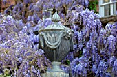 PASHLEY MANOR GARDEN, EAST SUSSEX. SPRING. LEAD URN, CONTAINER WITH WISTERIA. PURPLE, APRIL, ENGLISH, COUNTRY