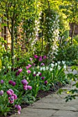 MORTON HALL, WORCESTERSHIRE: SPRING, APRIL, PATH WITH TULIPS, ARCH WITH CLEMATIS. CLASSIC, FORMAL, ENGLISH, COUNTRY, GARDEN