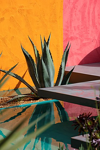 CHELSEA_FLOWER_SHOW_2017_BENEATH_A_MEXICAN_SKY_DESIGNED_BY_MANOJ_MALDE_LUIS_BARRAGAN_YELLOW__PINK_WA