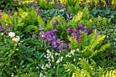 CHELSEA FLOWER SHOW 2017: THE MORGAN STANLEY GARDEN DESIGNED BY CHRIS BEARDSHAW - COUNTRY, COTTAGE, STYLE, PLANTING, FERN, FERNS, PRIMULA CANDELABRA, GREEN, FOLIAGE, SHADE