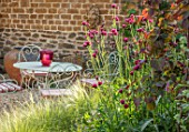 THE CONIFERS, OXFORDSHIRE: DESIGNER CLIVE NICHOLS - SMALL COURTYARD GARDEN - TABLE, CHAIRS, STIPA TENUISSIMA, WALL, CIRSIUM RIVULARE ATROPURPUREUM, CERCIS CANADENSIS RUBY FALLS