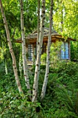 MORTON HALL, WORCESTERSHIRE: THE JAPANESE TEA HOUSE WITH BIRCH TRUNKS, BARK, STROLL GARDEN, SPRING, WOODLAND, JAPAN
