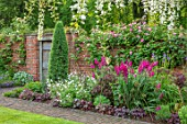 COTTAGE ROW, DORSET: BRICK PATH AND BORDER, SPRING, ALLIUMS, GLADIOLUS COMMUNIS SUBSP. BYZANTINUS, WALL, MORNING, WHITE WISTERIA