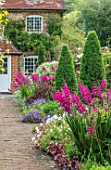 COTTAGE ROW, DORSET: BRICK PATH AND BORDER, SPRING, ALLIUMS, GLADIOLUS COMMUNIS SUBSP. BYZANTINUS, WALL, HOUSE, MORNING