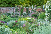 MOTTISFONT ABBEY, HAMPSHIRE: WALLED GARDEN, SUMMER, PERGOLAS, ARCHES, ROSES, PINK, WHITE, FLOWERING, FLOWERS, BORDERS, WALLS