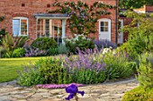 MORTON HALL, WORCESTERSHIRE: THE WEST GARDEN - LAWN, ROSA CLARENCE HOUSE ON WALL, ROSA KEW GARDENS, NEPETA BRAMDEAN, LAVANDULA RICHARD GREY, THYMUS RUSSETTINGS