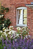 MORTON HALL, WORCESTERSHIRE: THE WEST GARDEN - HOUSE WALL, ROSA CREME DE LA CREME, ROSA KEW GARDENS, NEPETA GRANDIFLORA BRAMDEAN. WHITE, BLUE, FLOWERS, ROSES, WINDOW
