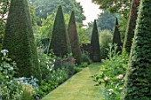 WOLLERTON OLD HALL, SHROPSHIRE: YEW WALK: GRASS, PATH, PYRAMID, TOPIARY CLIPPED YEW. FORMAL, ARTS AND CRAFTS, GREEN, LAWN, MAY, SUMMER