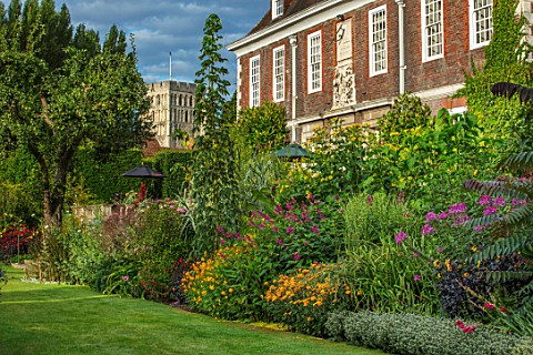 THE_SALUTATION_GARDEN_KENT_LAWN_HOTEL_HOUSE_EXOTIC_TROPICAL_BORDER__COSMOS_BRIGHT_EYES_SALVIA_BETHEL