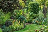 THE SALUTATION GARDEN, KENT: LAWN, BORDERS IN NEW EXOTIC, TROPICAL, GARDEN. FOLIAGE, PAULOWNIA TOMENTOSA, CANNA BETHANY, MUSA BASJOO. SUMMER