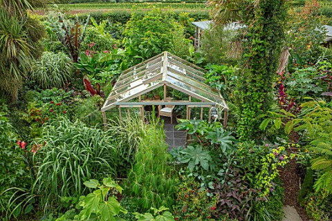 SWEETBRIAR_KENT_VIEW_OVER_BACK_GARDEN_WITH_GREENHOUSE_LARGE_LEAVED_PLANTS_TROPICAL_JUNGLE_EXOTIC_SMA