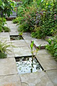 SWEETBRIAR, KENT: TROPICAL, FOLIAGE, EXOTIC GARDEN - PATIO - PAVING WITH RECTANGULAR PONDS, POOLS. WATER, WATERLILIES, WATER LILIES. SMALL, GARDEN, SUMMER
