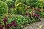 MORTON HALL GARDENS, WORCESTERSHIRE: KITCHEN GARDEN IN LATE SUMMER. BEDS WITH AMARANTHUS. WALL, WALLED, COUNTRY, HOUSE, CLASSIC, VEGETABLE, DARK, RED, DAHLIAS