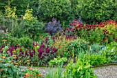 MORTON HALL GARDENS, WORCESTERSHIRE: KITCHEN GARDEN IN LATE SUMMER. BEDS WITH AMARANTHUS, TITHONIA. WALL, WALLED, COUNTRY, HOUSE, CLASSIC, VEGETABLE, DARK, RED, DAHLIAS