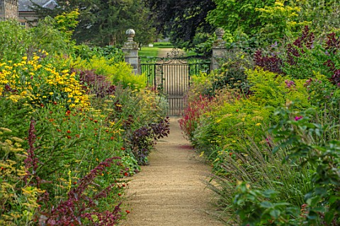 PARHAM_SUSSEX_ENTRANCE_HERBACEOUS_BORDERS_PERSICARIA_FIRETAIL_SOLIDAGO_EUROPAEUS_BRONZE_FENNEL_TAGET