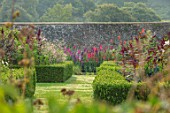 PARHAM, SUSSEX: WALLED, VEGETABLEL, POTAGER, GARDEN, BOX, EDGED, BEDS, PARTERRE, GLADIOLI, CUTTING, FLOWERS, BLOOMING, LATE, SUMMER, AUGUST