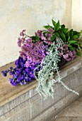 PARHAM, SUSSEX: TRUG WITH FRESHLY PICKED FLOWERS FROM THE CUTTING GARDEN. DELPHINIUM BRUCE, EUPATORIUM MACULATUM, JOE PYE WEED, ARTEMISIA SILVER QUEEN, BLOOMS, LATE, SUMMER