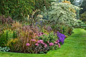 PETTIFERS, OXFORDSHIRE: KLIMT BORDER. SEDUMS, ASTERS, CORNUS CONTROVERSA VARIEGATA. BORDER, BORDERS, FALL, AUTMN, LATE, SUMMER, GRASS, PATH, ENGLISH, COUNTRY, GARDEN