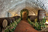 LEEDS CASTLE, KENT: CELLAR, FLORAL DESIGNER JO MOODY OF MOODY BLOOMS, ARCHWAY WITH WHITE FRAGRANT ROSE, ROSA OHARA
