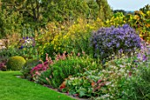 BOURTON HOUSE GARDEN, GLOUCESTERSHIRE: AUTUMN BORDER IN SEPTEMBER. LAWN, GRASS, SEDUMS, PENSTEMONS, ASTERS, BERGENIA, HERBACEOUS, LATE SUMMER, ENGLISH, COUNTRY, GARDEN