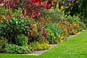 BOURTON HOUSE GARDEN, GLOUCESTERSHIRE: LAWN, BORDER WITH CANNA DURBAN, AUTUMN, FALL, SEPTEMBER, ENGLISH, HERBACEOUS, LATE, SUMMER, CLASSIC, ENGLISH