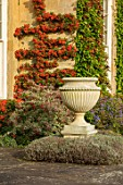 BOURTON HOUSE GARDEN, GLOUCESTERSHIRE: HOUSE, STONE URN, CONTAINER, AUTUMN, FALL, SEPTEMBER, ENGLISH, LATE, SUMMER, TRAINED PYRACANTHA ON WALL