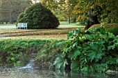 FORDE ABBEY, SOMERSET: VIEW ACROSS LONG POND WITH WATERFALL, GUNNERA MANICATA, WHITE, WOODEN, BENCH, SEAT. OCTOBER, AUTUMN
