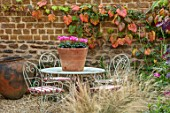 THE CONIFERS, OXFORDSHIRE: COURTYARD GARDEN, TABLE, CHAIRS, CUSHIONS, CONTAINER WITH CYCLAMEN ROSE, WALL, VITIS COIGNETIAE, PATIO, STONE, CONTAINERS, AUTUMN, FALL, OCTOBER