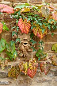 THE CONIFERS, OXFORDSHIRE: DESIGNER CLIVE NICHOLS - HEAD BY FIONA BARRATT ON WALL WITH VITIS COIGNETIAE. COTSWOLDS, ORNAMENT, COTTAGE, AUTUMN, FALL, OCTOBER, SHRUBS, FOLIAGE