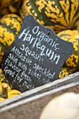 BLACK SLATE SIGN WITH ORGANIC HARLEQUIN SQUASH