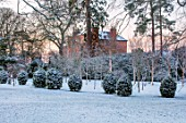 MORTON HALL, WORCESTERSHIRE: WINTER - FROST, SNOW, LAWN, VIEW OF HOUSE, ENGLISH, COUNTRY, GARDEN, COLD, DECEMBER, AVENUE OF VIBURNUMS, BETULA, BIRCHES, DAWN, SUNRISE